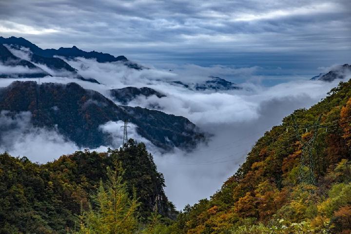 มรดกโลก 'เสินหนงเจี้ย' ขยายคลุมเขตอนุรักษ์ธรรมชาติฉงชิ่ง