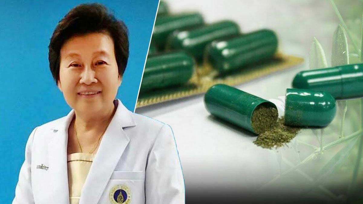 วิทยาลัยสมุนไพร แนะใช้ยาฟ้าทะลายโจร ช่วยผู้ป่วยก่อน ไม่เน้นกินป้องกัน
