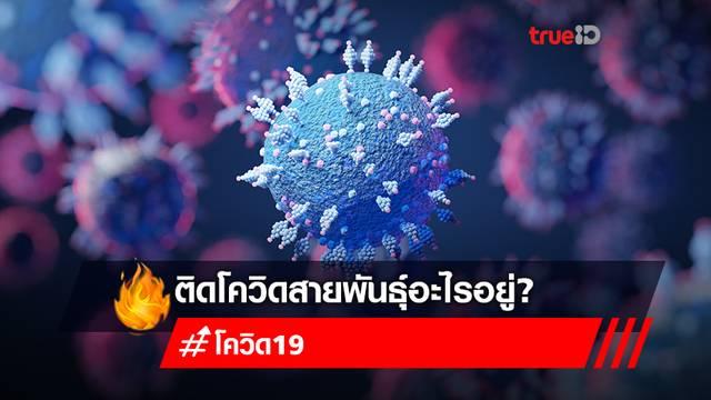 เช็กอาการติดโควิดสายพันธุ์ไหน? เทียบอาการติดโควิด-19 กับสายพันธุ์ที่ระบาดในไทย