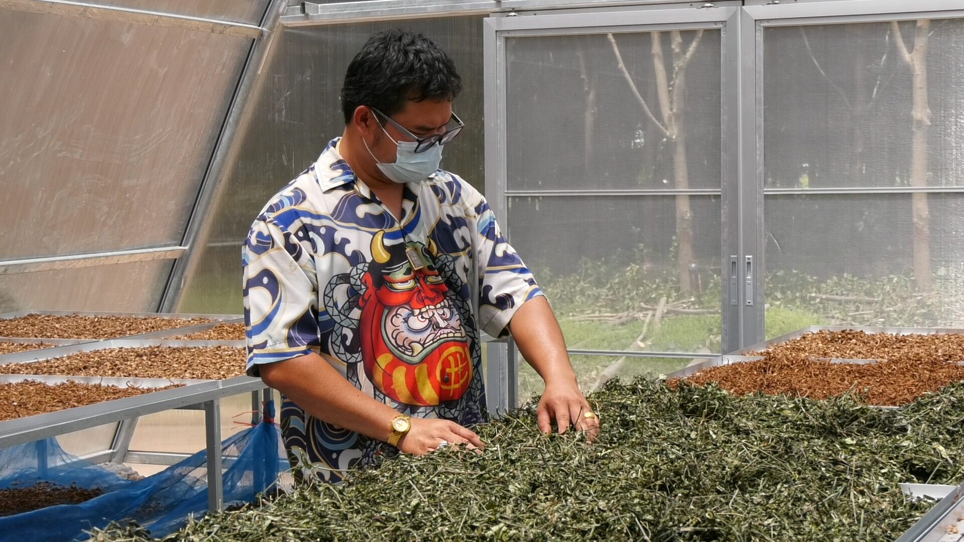 กลุ่มเกษตรกรคนรุ่นใหม่สุรินทร์ รวมตัวเร่งบดยาสมุนไพร บรรจุแค๊ปซูล ส่งรพ.ช่วยผู้ป่วยโควิด