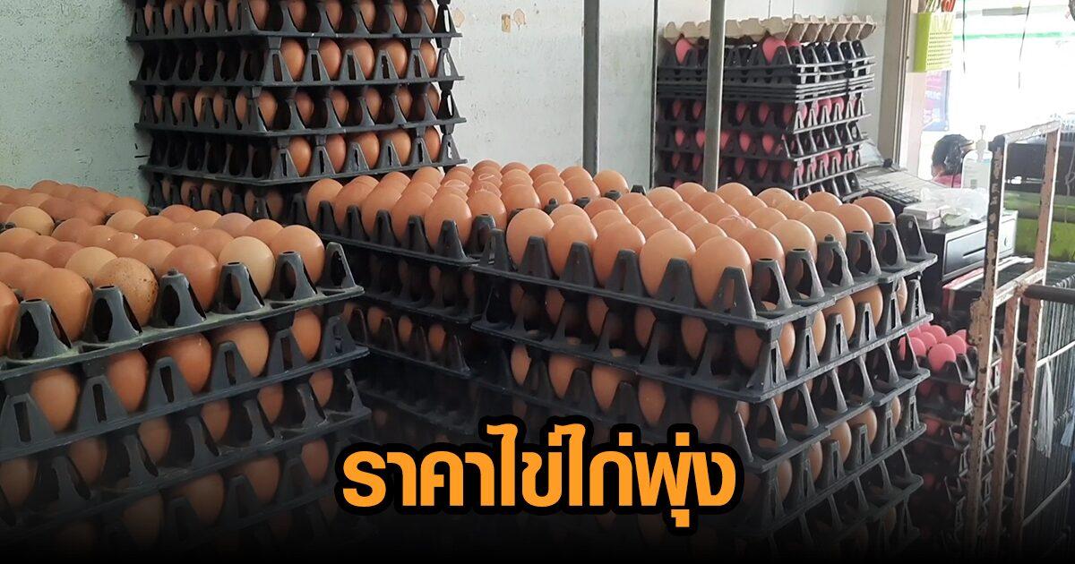 อุทัยธานีราคาไข่ไก่พุ่งอีก ร้านขายส่งไข่ไก่เผยไม่ได้กักตุน แต่ไม่มีจะขาย