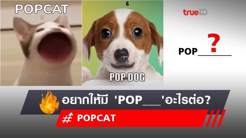Pop cat, Pop Dog แข่งแล้ว! อยากให้มี 'POP___' อะไร? ลงแข่งขันคลิกระดับโลกต่อ