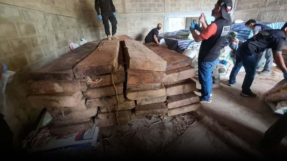 ชุดพญาเสือ บุกจับไม้เถื่อน ซุกโกดังเมืองลำปาง ค่าไม่ต่ำกว่า 20 ล้าน ถ้าส่งขายต่างประเทศ