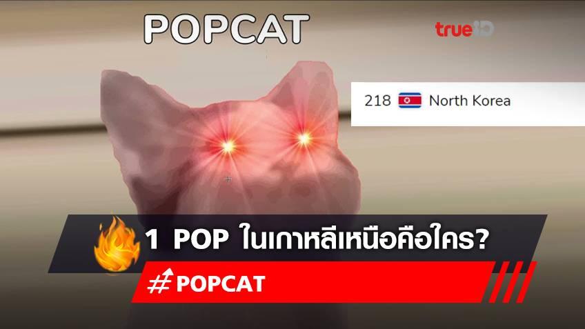 """""""POPCAT"""" 1 แต้ม ในเกาหลีเหนือ มาจากไหน? คิมจองอึน ให้ใช้อินเทอร์เน็ตได้หรอ?"""