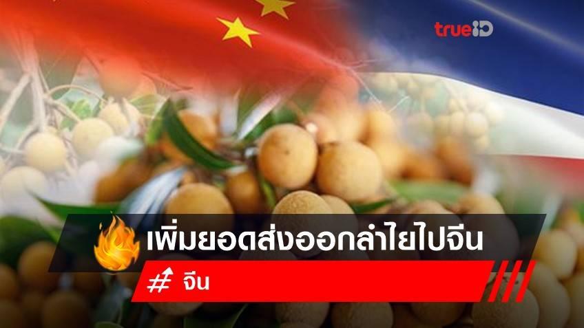 จีน ปลดล็อก 56 บริษัทไทย เพิ่มยอดส่งออกลำไยไปจีน