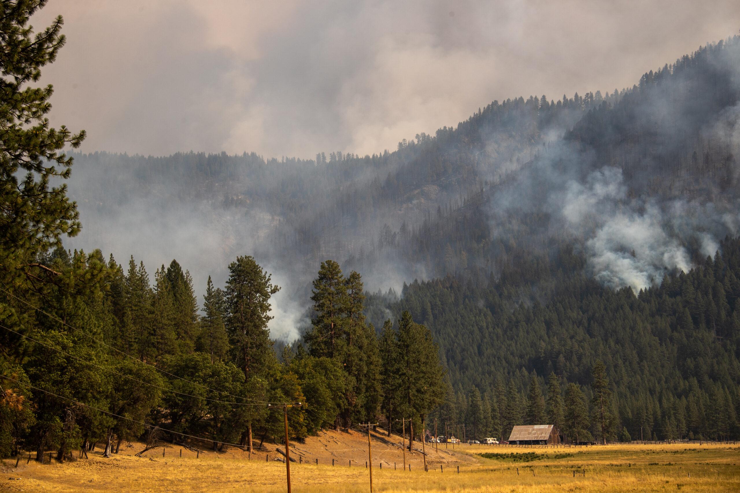 แคลิฟอร์เนียสั่งปิดป่า รวม 50 ล้านไร่ หวั่นอันตรายจาก 'ไฟป่า'