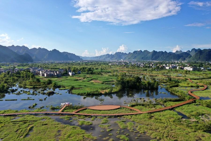 ชมวิว 'พื้นที่ชุ่มน้ำแม่น้ำเฉิงเจียง' ในกว่างซี