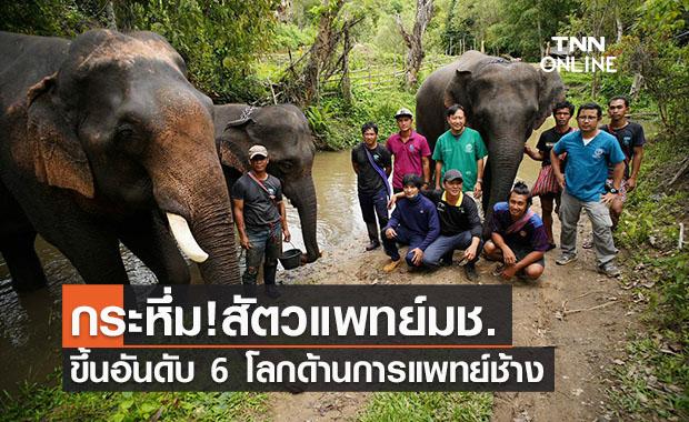 สัตวแพทย์มช. ขึ้นอันดับ 6 ของโลก ด้านการแพทย์เกี่ยวกับช้าง