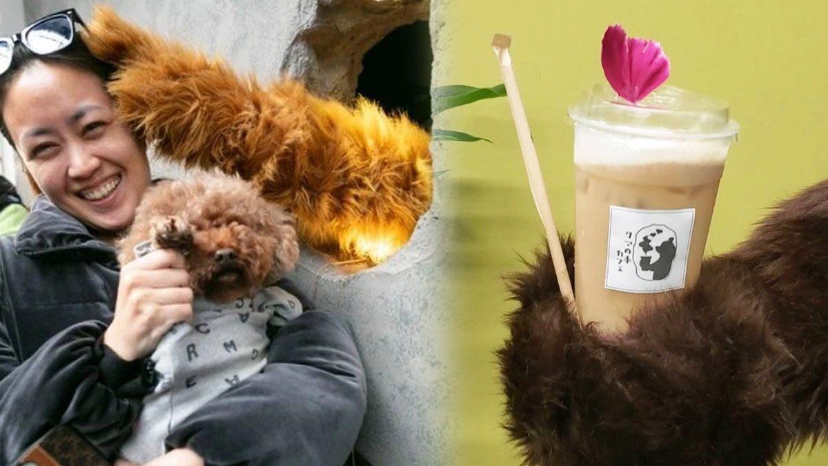 ญี่ปุ่นเปิดคาเฟ่ อุ้งเท้าหมี เพื่อเป็นกำลังใจให้พนักงานต่อสู้กับปัญหาสุขภาพจิต
