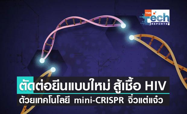 mini-CRISPR ตัดต่อยีนแบบใหม่ขนาดเล็กกว่าเดิม หนทางสู่การกำจัด HIV