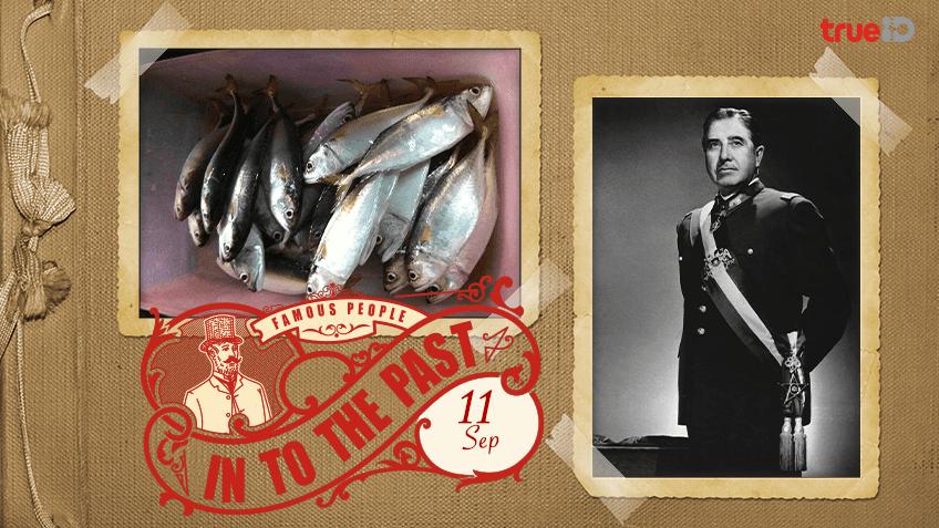 Into the past : กรมประมงประสบความสำเร็จในการเพาะขยายพันธุ์ปลาทู , พลเอก ออกุสโต ปิโนเชต์ ก่อรัฐประหารและก้าวขึ้นเป็นผู้นำรัฐบาลทหารในชิลี (11ก.ย.)