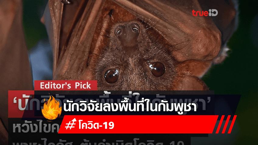 Editor's Pick: 'นักวิจัยลงพื้นที่ในกัมพูชา' ศึกษาสัตว์พาหะไวรัสร้าย หวังไขความลับ 10 ปี