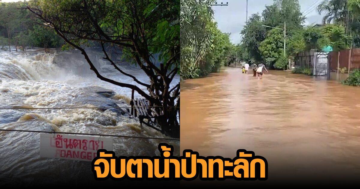 ชัยภูมิอ่วม! 9 อำเภอยังท่วมหนัก จับตาน้ำป่าทะลักล้อมตัวเมือง จ่อท่วมใหญ่ คาดไม่เกิน 2 วัน