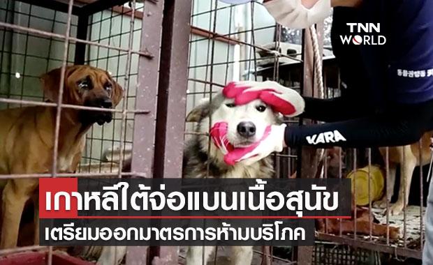 ประธานาธิบดีเกาหลีใต้เตรียมแบนการรับประทานเนื้อสุนัข