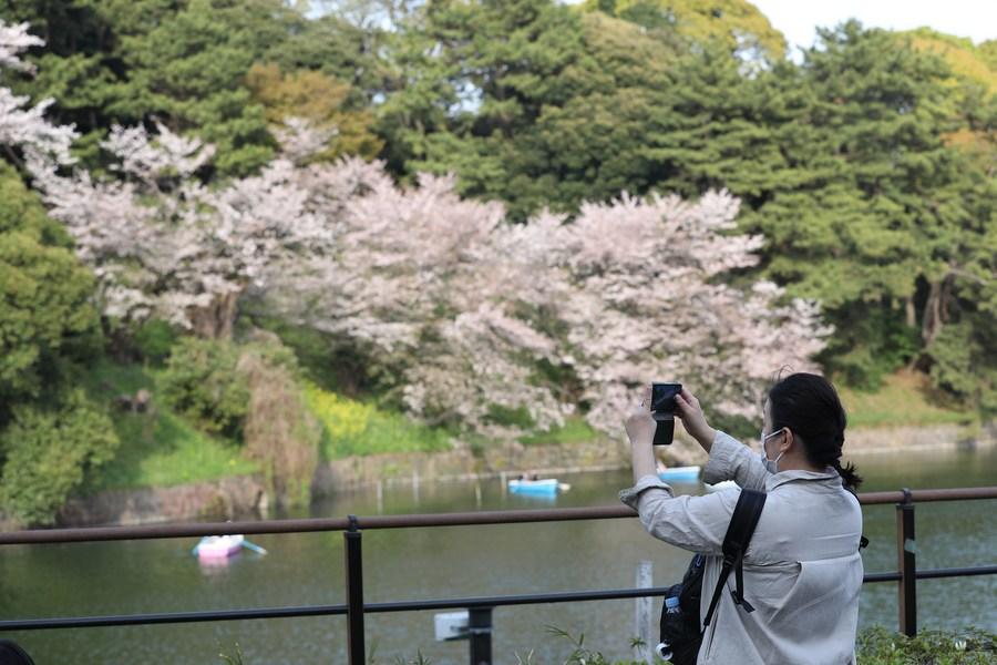 ญี่ปุ่นออก 'พันธบัตรคำนึงเพศ' ครั้งแรก หนุนสร้างพลัง-การศึกษาในผู้หญิง