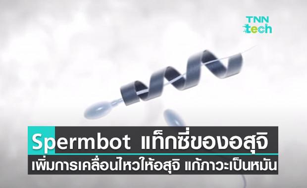 สเปิร์มบอต (Spermbot) รถแท็กซี่ของตัวอสุจิ ช่วยแก้ปัญหาภาวะเป็นหมันจากตัวอสุจิเคลื่อนไหวน้อย