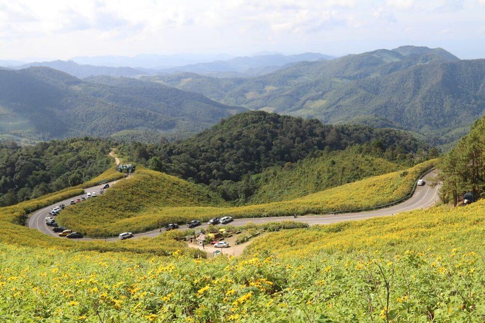 แม่ฮ่องสอน เตรียมเปิดท่องเที่ยว ทุ่งดอกบัวตอง บานสะพรั่งเหลืองอร่าม ดอยแม่อูคอ 11 พฤศจิกายน นี้