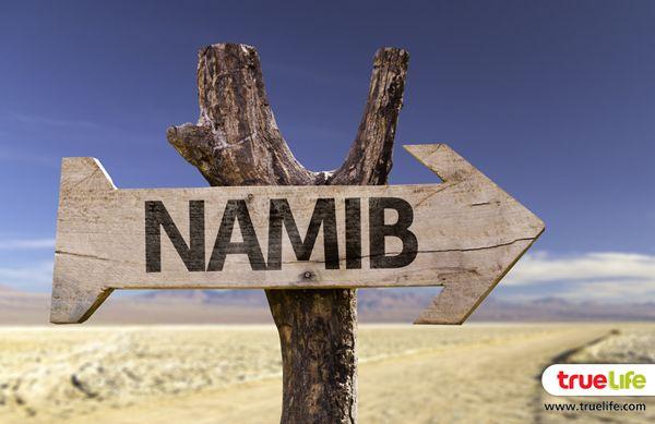 Namib Desert (4)