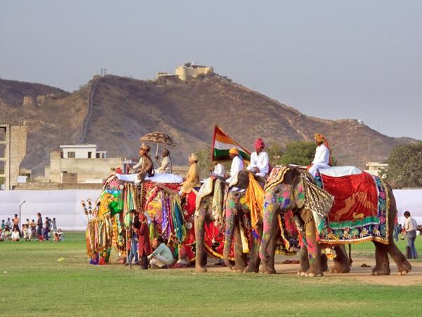 jaipur-elephant-festival_pete-niesen_shutterstock-com