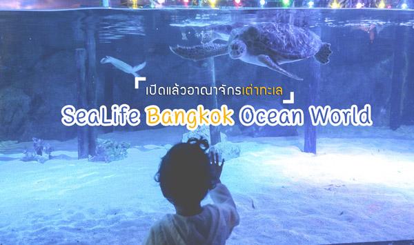 à¹x80à¸x9bิà¸x94à¹x81ลà¹x89ว อาà¸x93าà¸x88ัà¸x81รà¹x80à¸x95à¹x88าà¸x97ะà¹x80ล SeaLife Bangkok Ocean World สยาม à¸x9eาราà¸x81อà¸x99 à¸x94ำà¸x94ิà¹x88à¸x87สูà¹x88à¹x82ลà¸x81à¹x83à¸x95à¹x89à¸x97à¹x89อà¸x87à¸x97ะà¹x80ลà¸x81ัà¸x99à¹x84à¸x94à¹x89à¹x81ลà¹x89ววว
