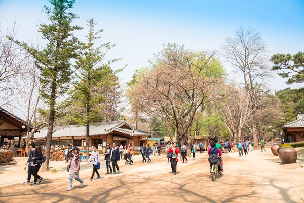 เกาะนามิ เกาหลีใต้ 10