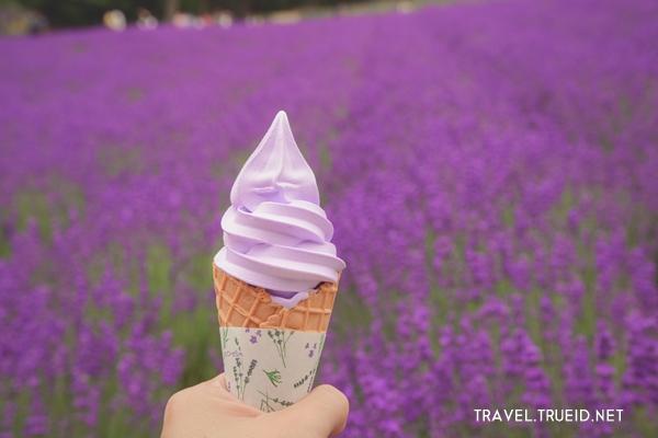 Lavender soft cream