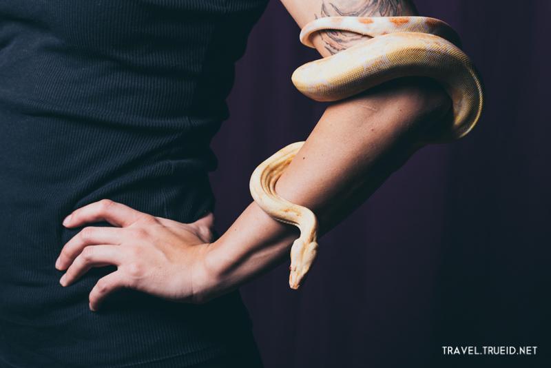 Snake Spa