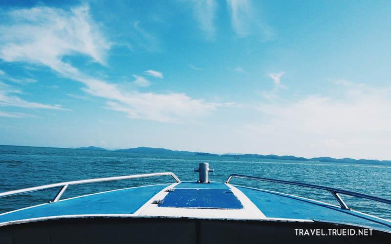 พายเรือคายัคชิลล์ๆ ชมอุโมงค์ป่าโกงกาง ที่เกาะยาวใหญ่ นอนกอดธรรมชาติท้องอันดามัน