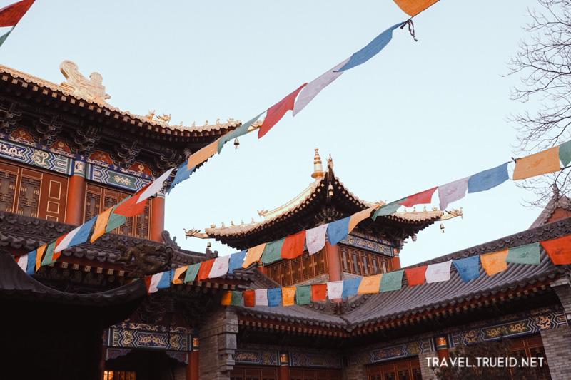 Xian Trip Lama Temple