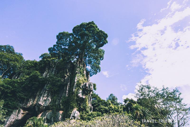 Suan Hin Pha Ngam