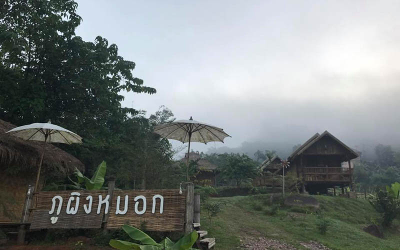 Phu Phing Mok Homestay