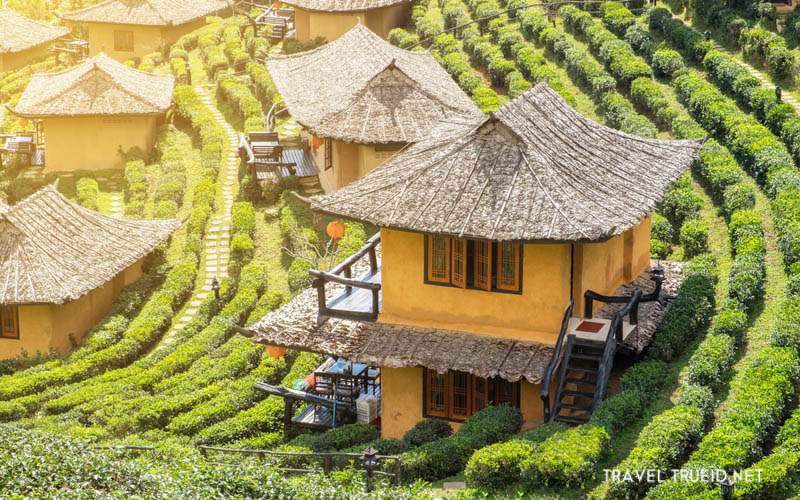 Honeymoon Thailand