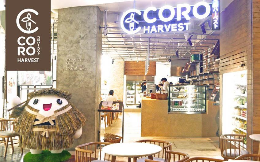 Organic Food Bangkok