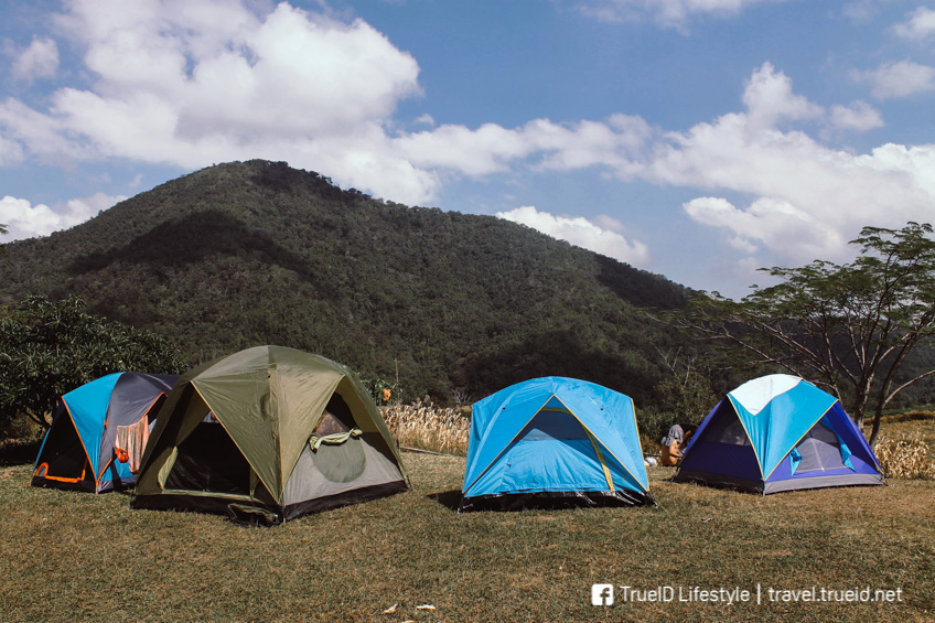 Phu Toei National Park