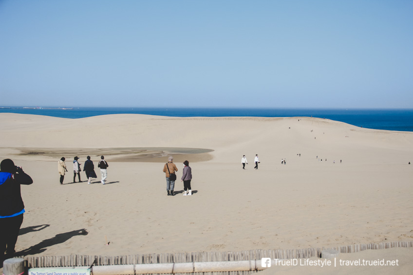 sand dunes Tottori แบกเป้ เที่ยวญีปุ่น ทะเลทราย ทตโตะริ