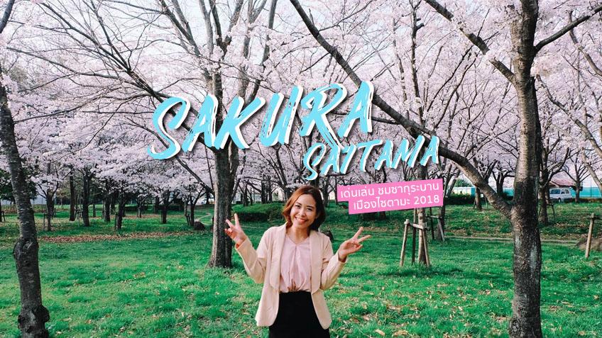 อัพเดตล่าสุด! ซากุระบาน 2018 เมืองไซตามะ ญี่ปุ่น ถ่ายรูปเล่นชิลล์ๆ เดินทางไม่ไกลจากโตเกียว