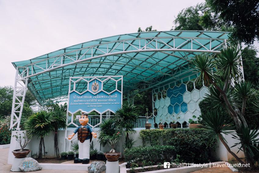 ศูนย์อนุรักษ์พันธุ์เต่าทะเล โครงการพระราชดำริ พระราชินี