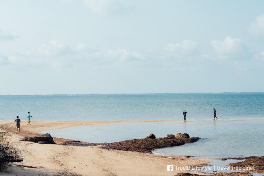 เกาะมันใน ประแสร์ ระยอง