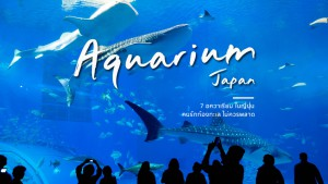 Japan Aquarium