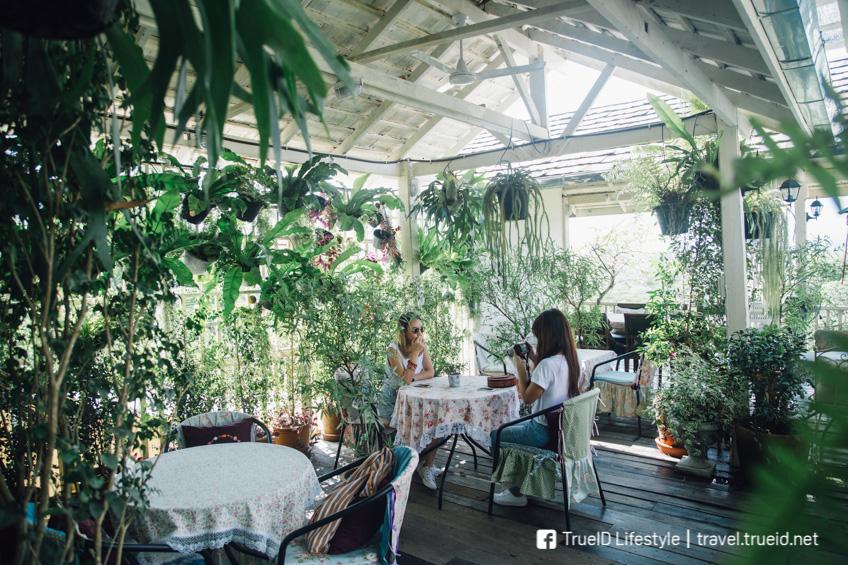 Hacienda Coffee House เชียงราย