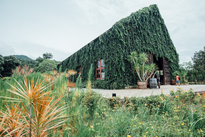 The Birder's Lodge เขาใหญ่ ที่ถ่าย Pre Wedding ใกล้กรุงเทพ
