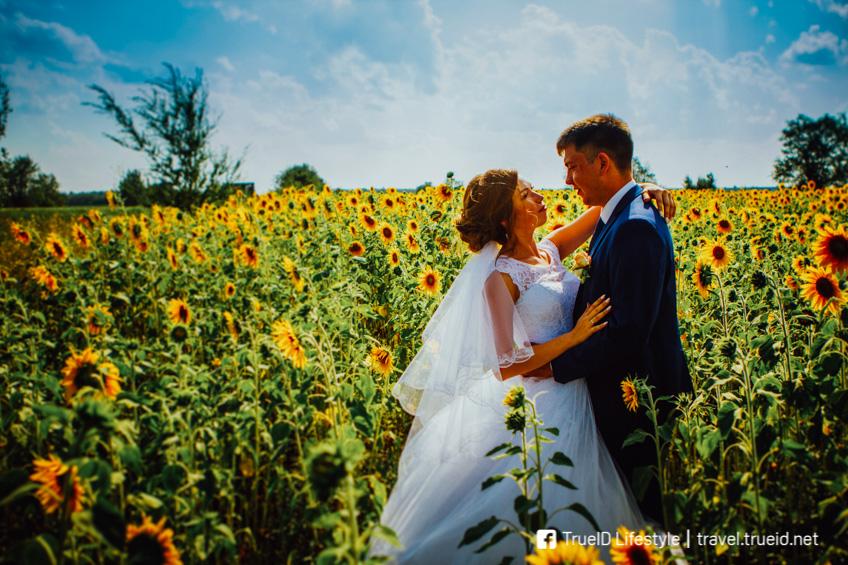 ทุ่งทานตะวัน ที่ถ่าย Pre Wedding ใกล้กรุงเทพ