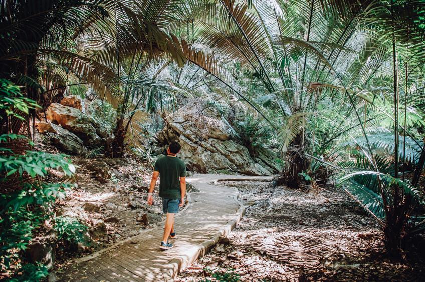 หุบป่าตาด ที่เที่ยวปลายฝนต้นหนาว