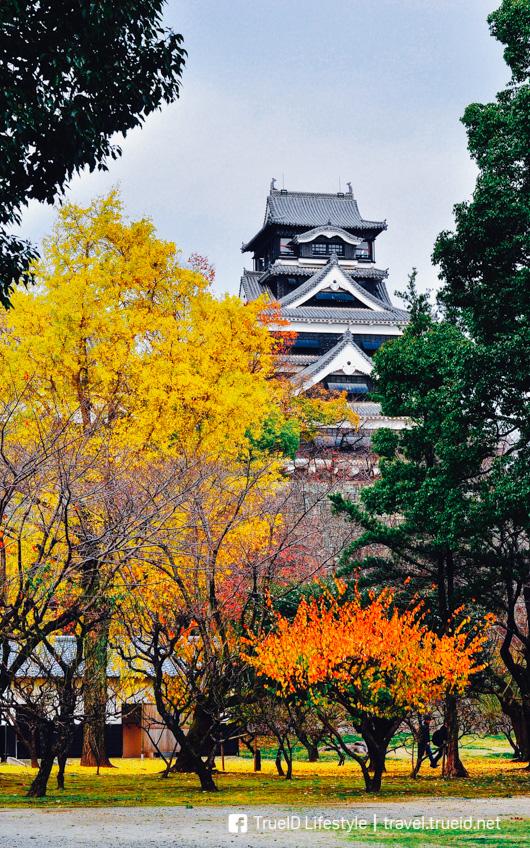 พิกัด ชมใบไม้เปลี่ยนสี คิวชู ญี่ปุ่น