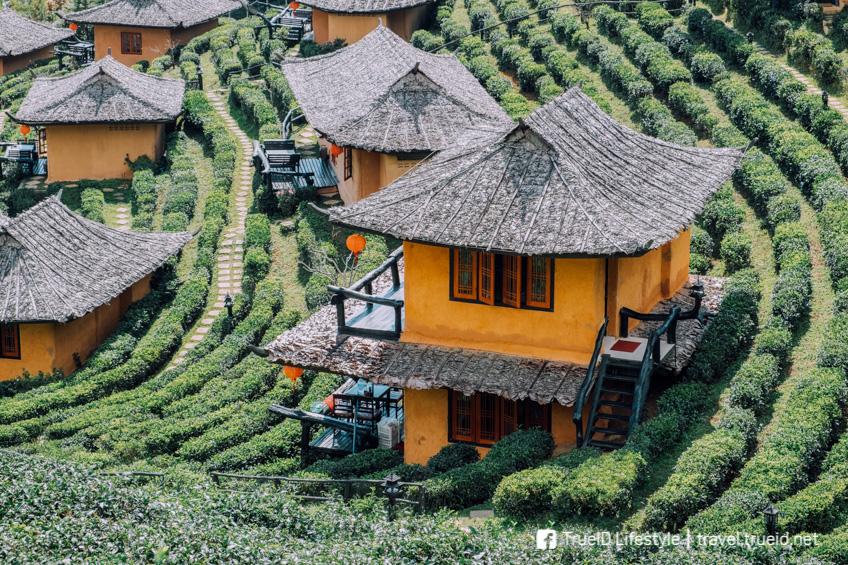 บ้านรักไทย เที่ยวหน้าหนาว