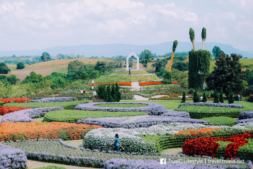Flora Park วังน้ำเขียว ทุ่งดอกไม้ ถ่ายรูปสวย