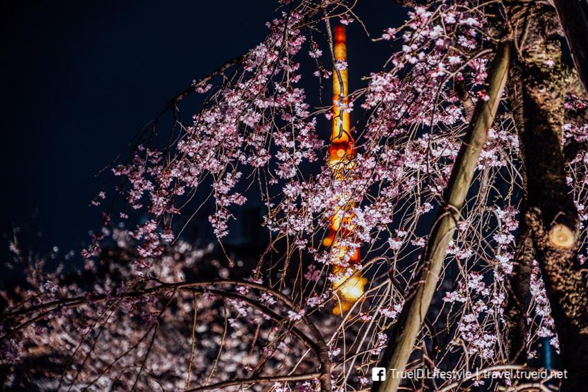 Mohri Garden เที่ยวโตเกียว