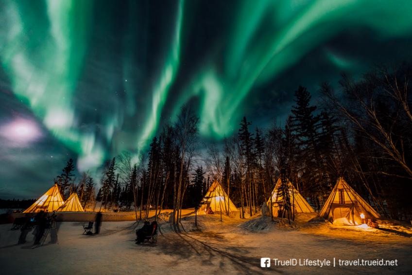 แสงเหนือ Canada  Aurora