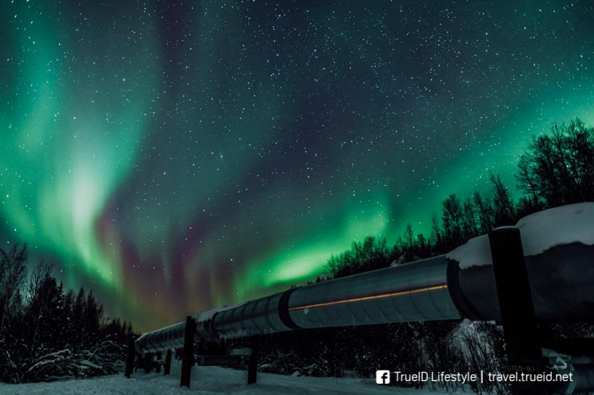 แสงเหนือ Alaska