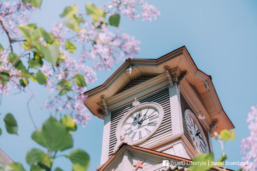ที่เที่ยวซัปโปโร ญี่ปุ่น Sapporo Clock Tower